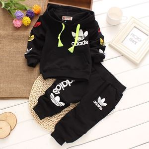 Picture of Adidas Long Sleeve Tee and Pants Set (2-5y)