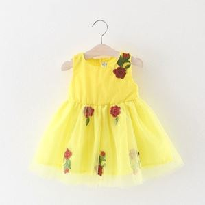 Picture of Design Rose Baby Girl Sleeveless Lace Dress